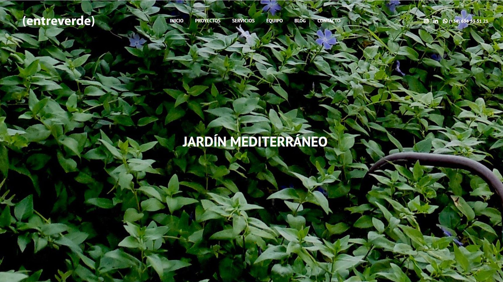 Diseño web de paisajismo para entreverde