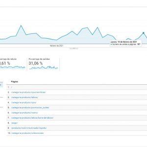 Google Analytics para empresa de cosmética Gio de giovanni - Publicidad de cosmética - Sàrsia Publicitat